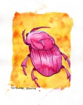 Pink Beetle - 8x10 inches. Was $70, now $50.