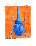 Blue Beetle (8x10 inches) - SOLD