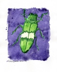 Green Beetle 02 (8x10 inches) - SOLD