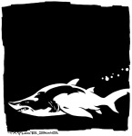 Shark: 8x8 inches, $90